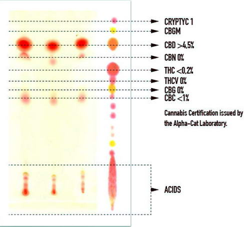 Profil Kannabinoidów olejku Cibidol CBD Oil