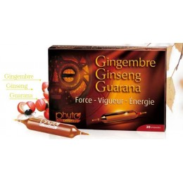 Ginseng Gingembre Guarana...